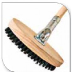 Body brush & handle